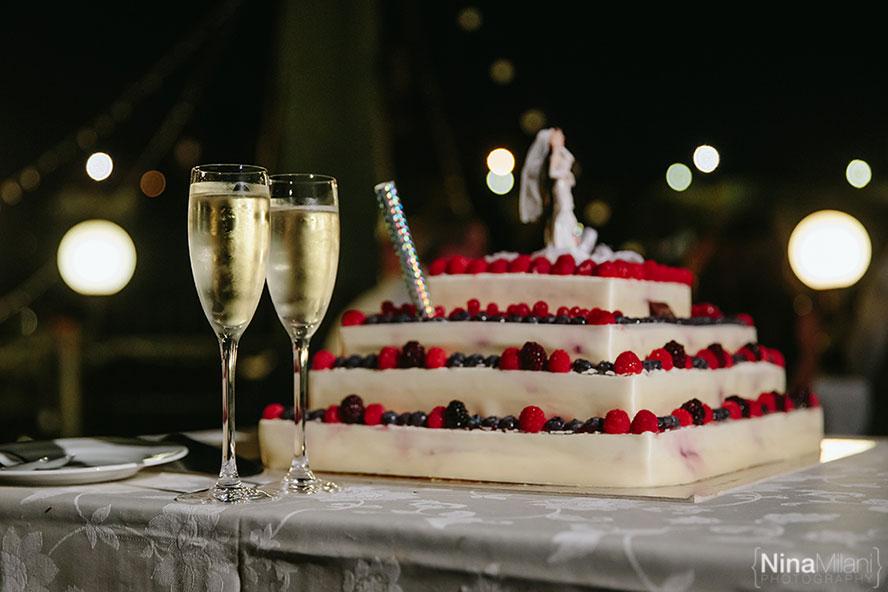 matrimonio wedding crocetta torino esperia italy nina milani photographer fotografo  (57)